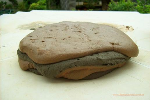 Raiz de Bonsai sobre Pedra - 9